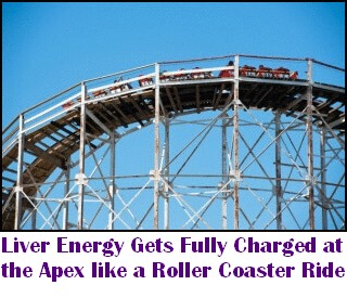At the Peak of the Rollercoaster, Liver Energy is charged