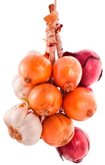 onions and garlic are two yang, warming or heating foods